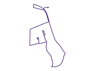 Map showing location of PUR: Purple Line